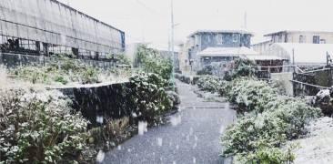 Schnee Kanagawa