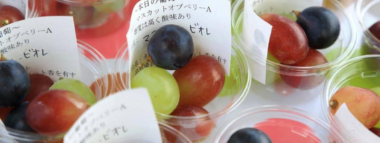 Japan Wein