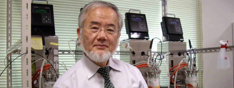 Ōsumi Nobelpreis