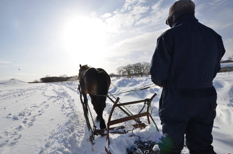Schnee Hokkaido