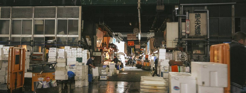 tsukiji fischmarkt
