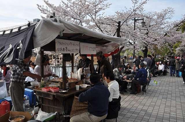 Kirschblüte Sakura Essen Essensstand