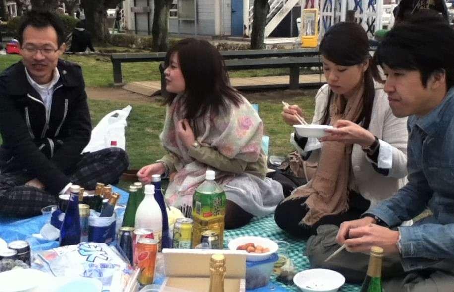 Kirschblüte Hanami Essen gemeinsam Gruppe