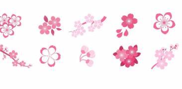 Illustration von verschiedenen Typen Kirschblüten in Japan