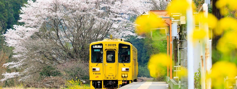 JR Pass Ausflug aufs Land Bahn Japan Japan Rail Pass Landpartie