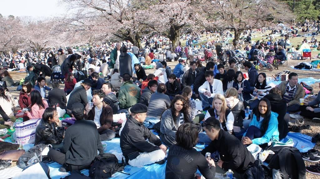 Japaner kennenlernen