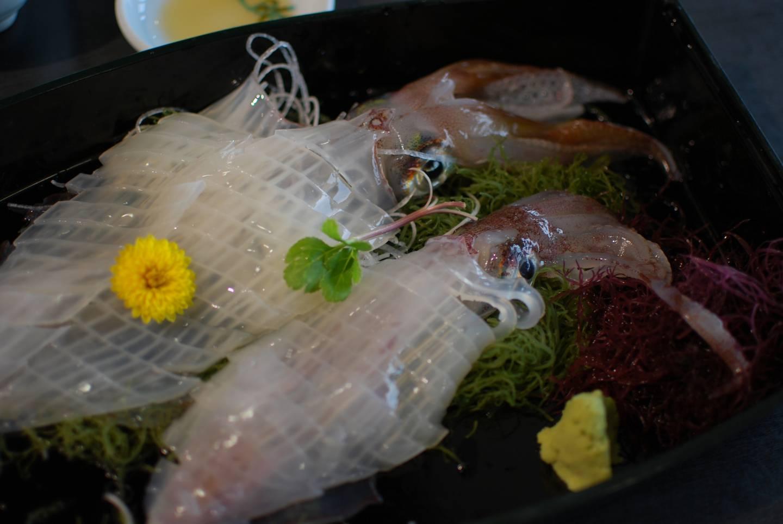 Ekel Essen Japan Ika Tintenfisch