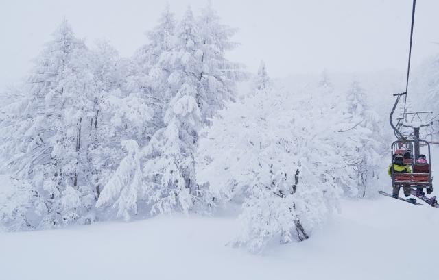 skifahren japan