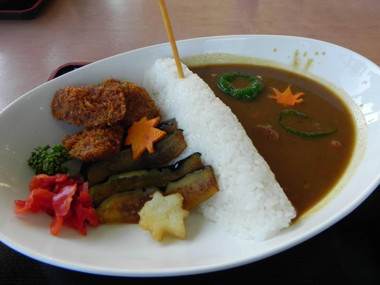 Kawaguchi Damm Curry
