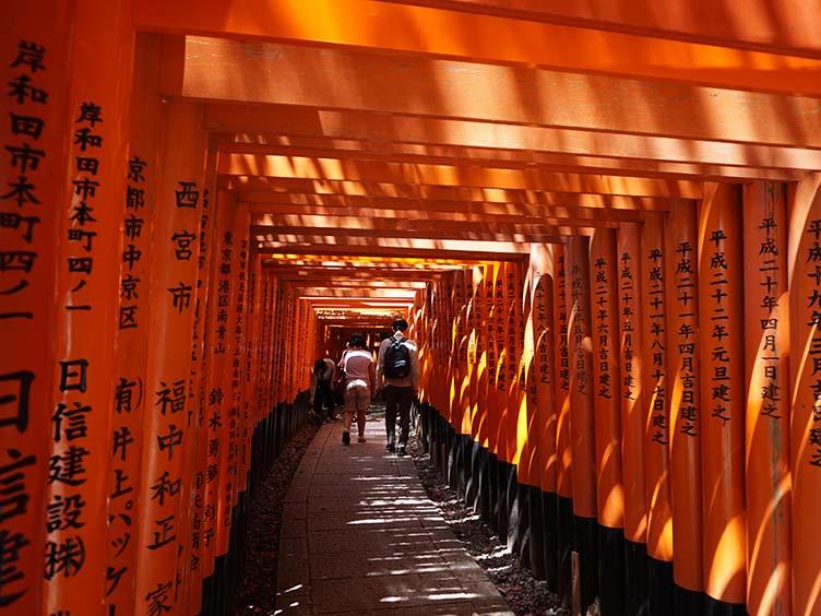 Die roten Torii des Fushimi Inari Taisha in Kyoto