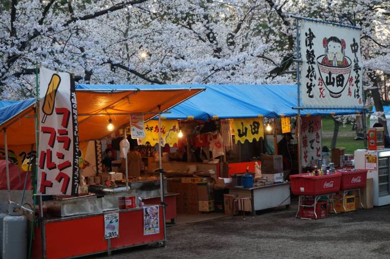 Kirschblütenfest in Hirosaki