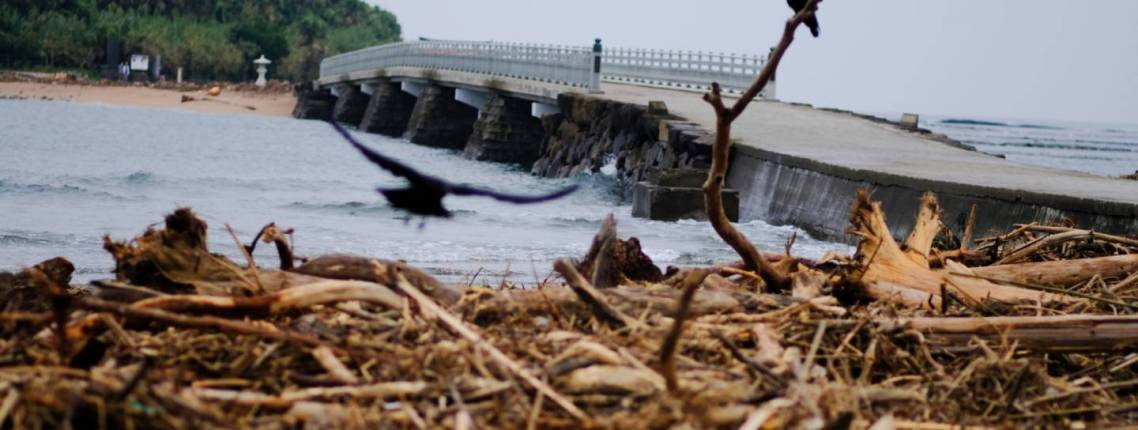 """Als stärkster Sturm seit einem Vierteljahrhundert hat """"Jebi"""" Japans Westküste verwüstet und elf Leben gefordert."""