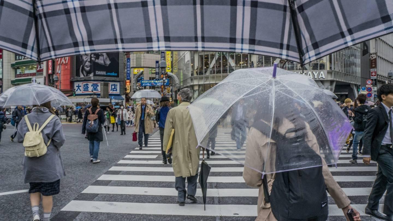 Schirme an Regentagen
