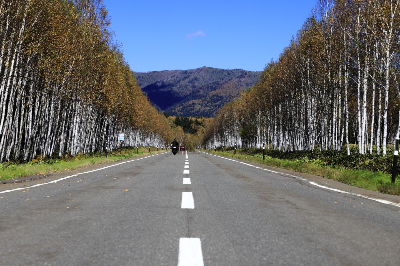 Fernstraße R273 vor dem Mikunitōge