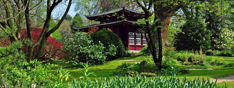 Der Japanische Garten als Mythos | JAPANDIGEST