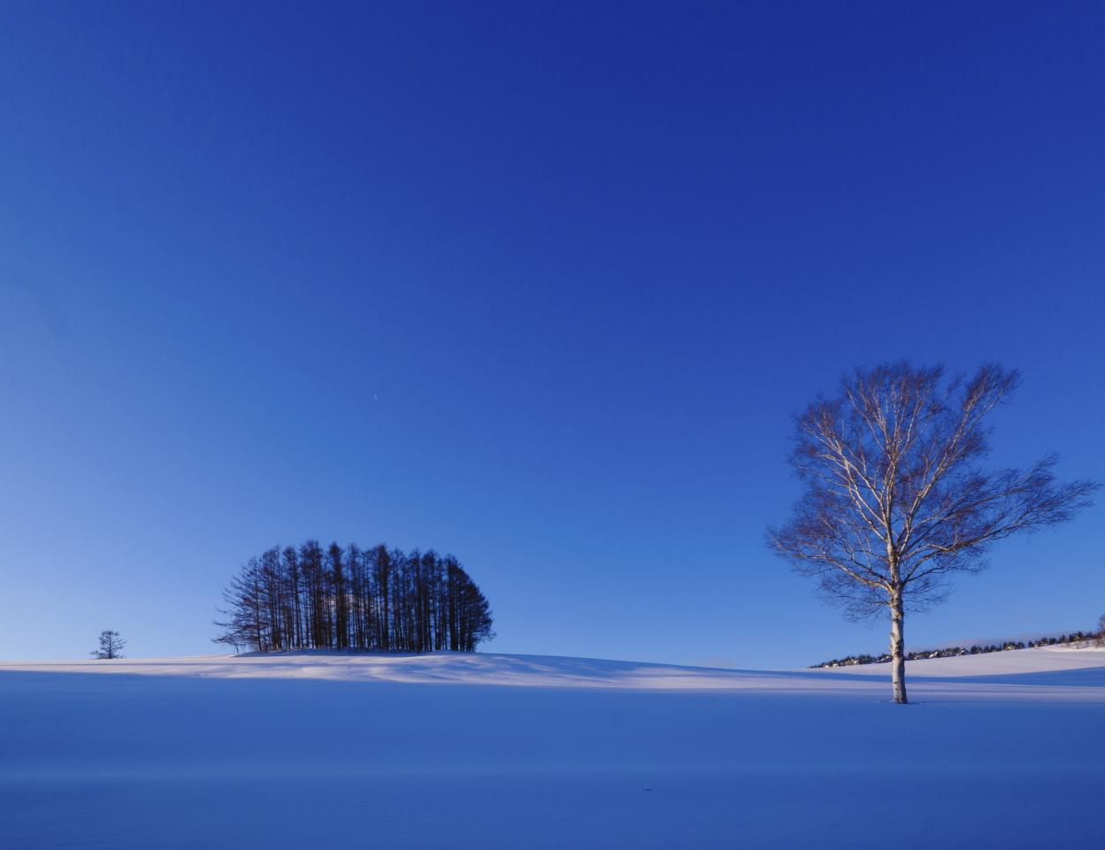schneelandschaft japan