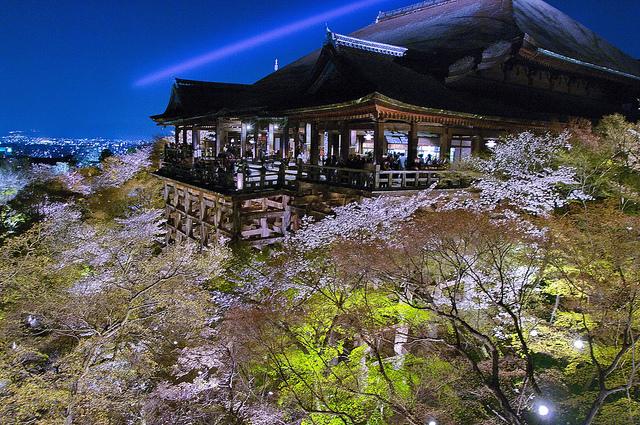Abendliche Kirschblütenbeleuchtung um den Kiyomizu-dera