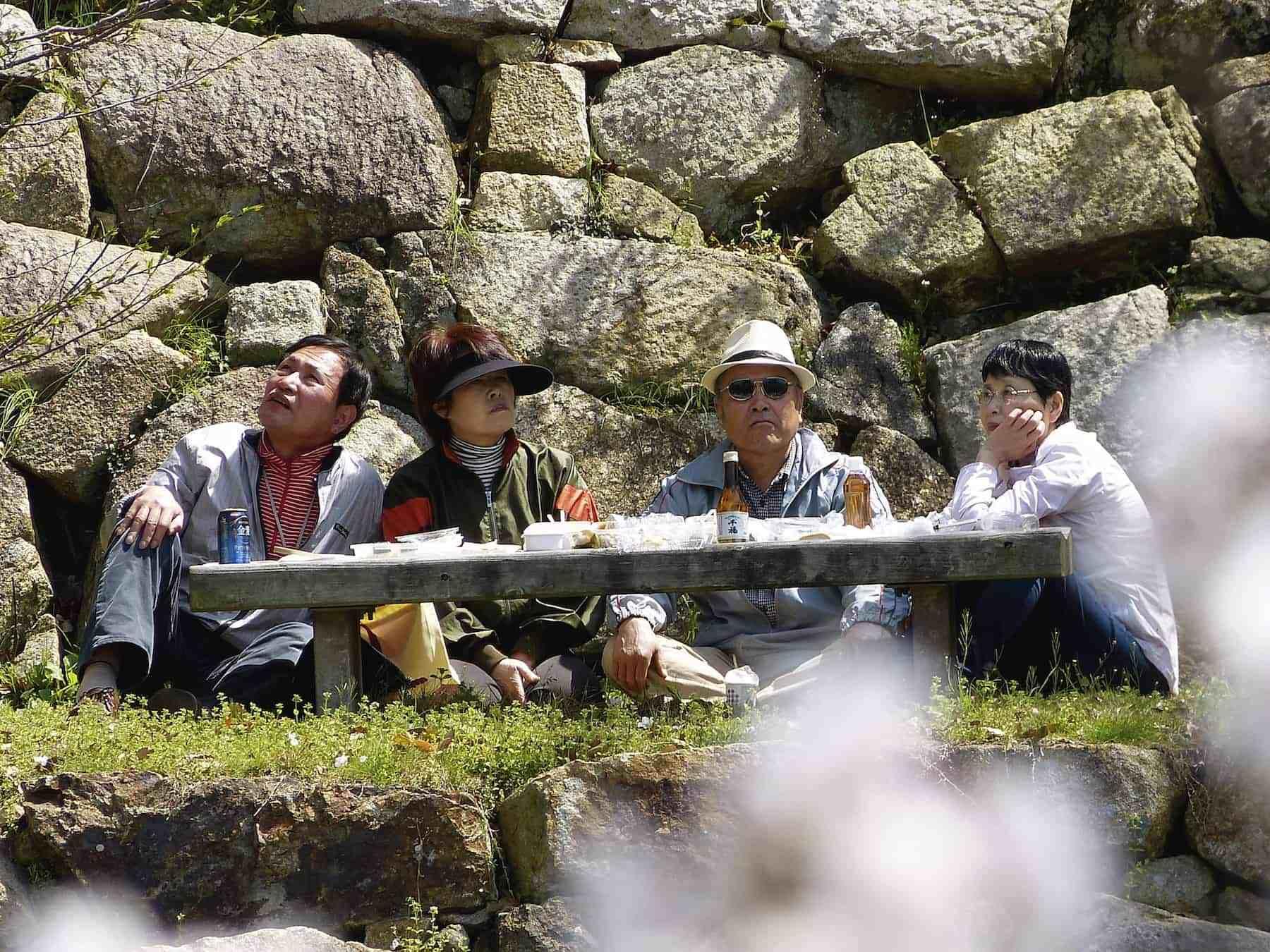 japaner beim hanami