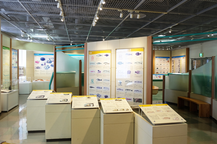 Nagahama Fischmarkt Informationstafeln