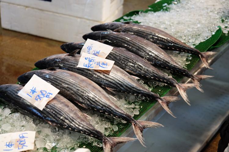 Frischer Fisch auf dem Nagahama Fischmarkt