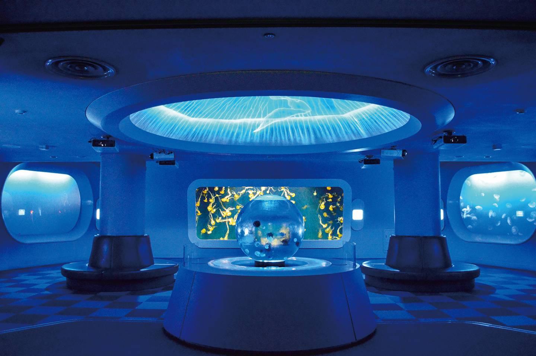 Aquarium mit Fischtanks