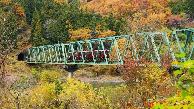 Herbstlaubschau in Japan