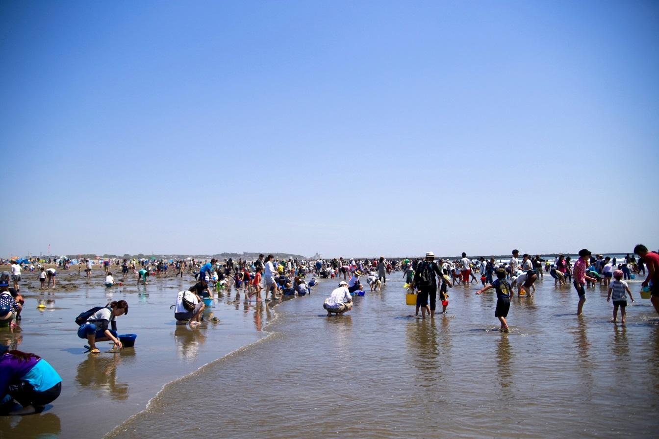 Muschelsuchen am Strand in Japan