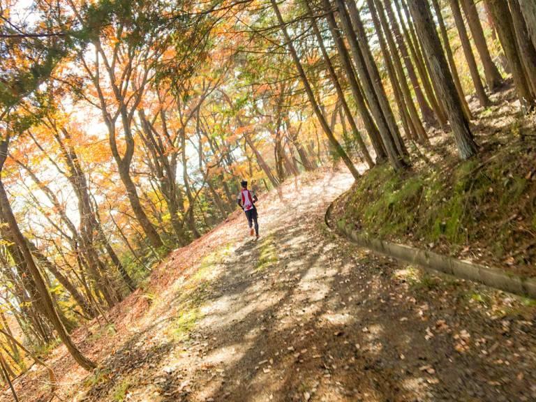 Mann rennt auf einem Pfad durch den Wald