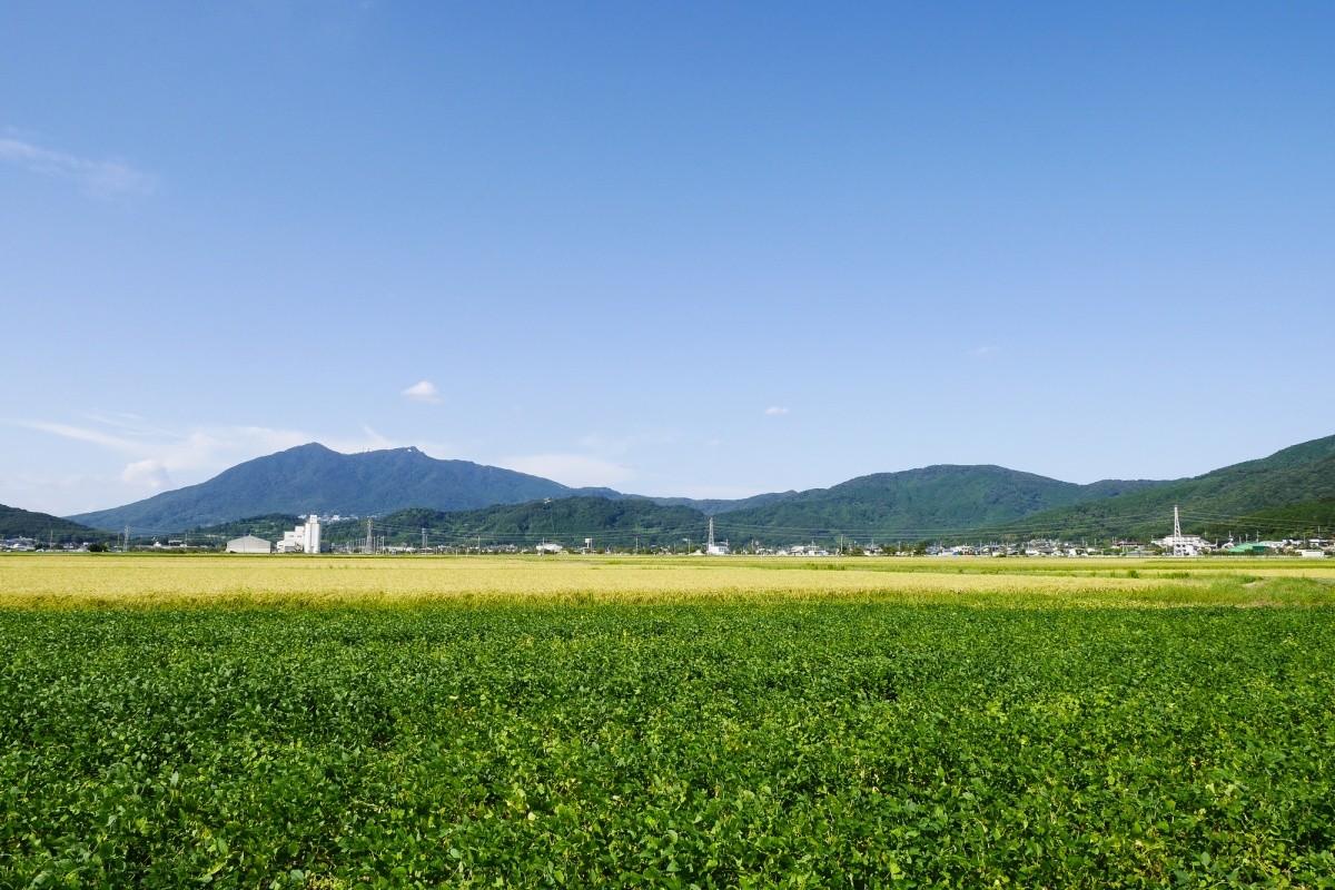 japanische Landschaft mit Hügel