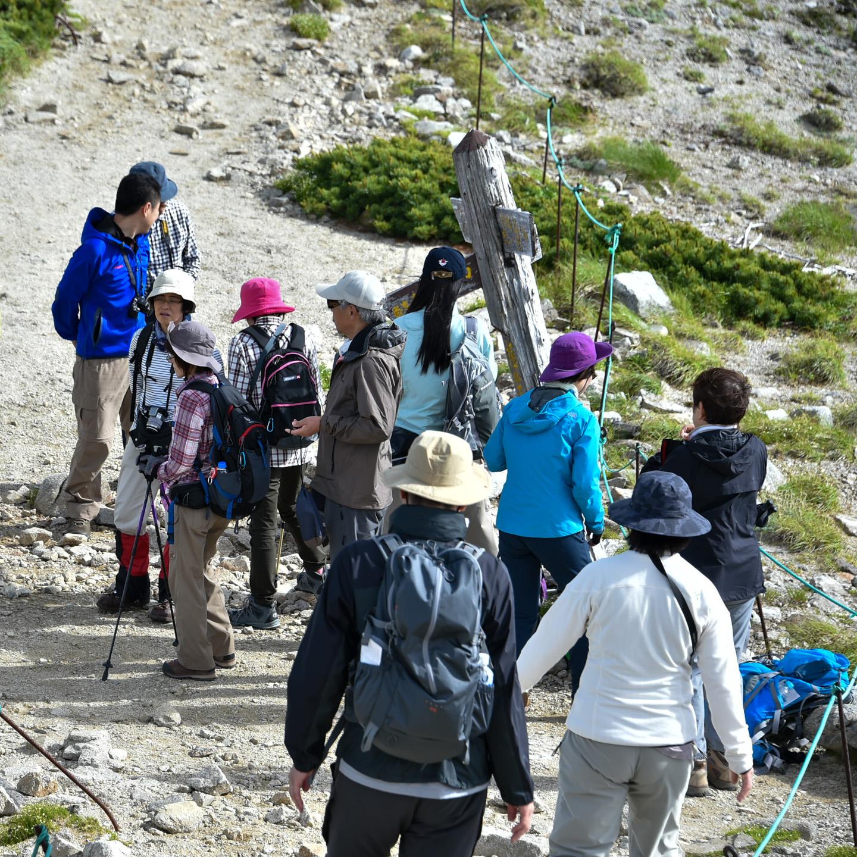 Wandergruppe auf einem Berg
