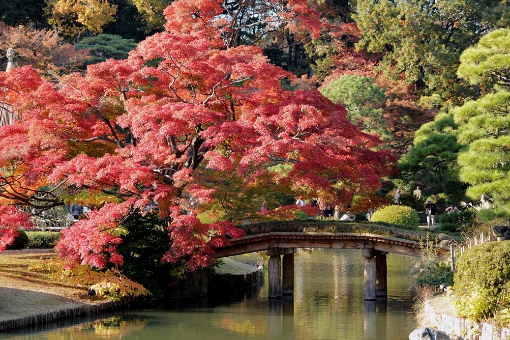 Herbst im Rikugien