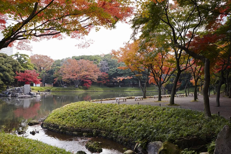 Herbst im Koishikawa Kōrakuen