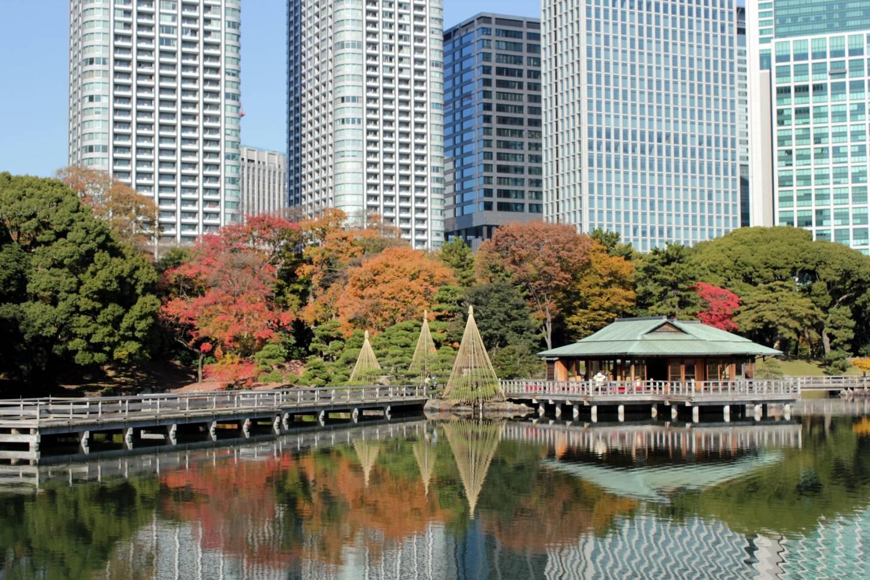 Herbst im Hamarikyū-Park