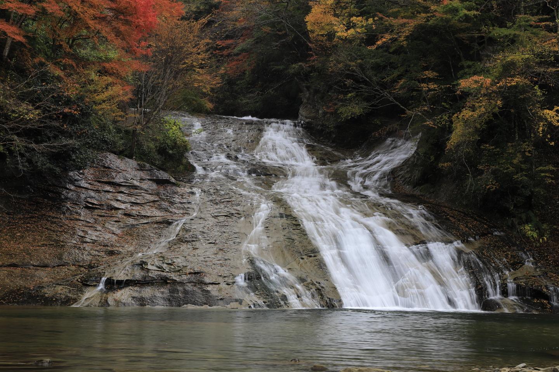 Herbstlaub am Awamata-Wasserfall im Yōrō Keikoku-Park.