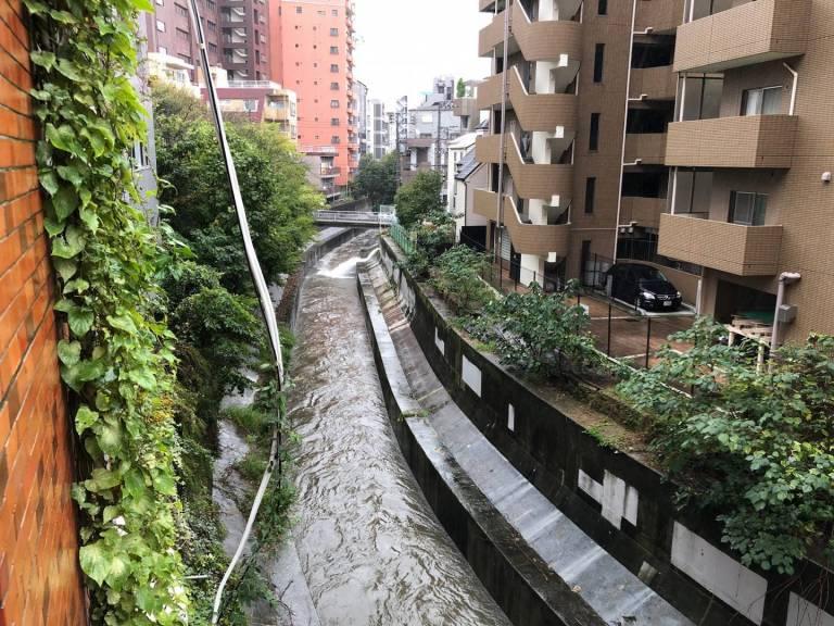 Shibuyagawa bei Hochwasser