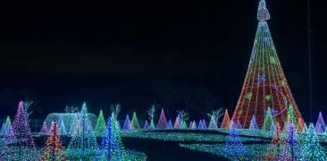 Weihnachtsbeleuchtung im Yomiuri Land bei Nacht