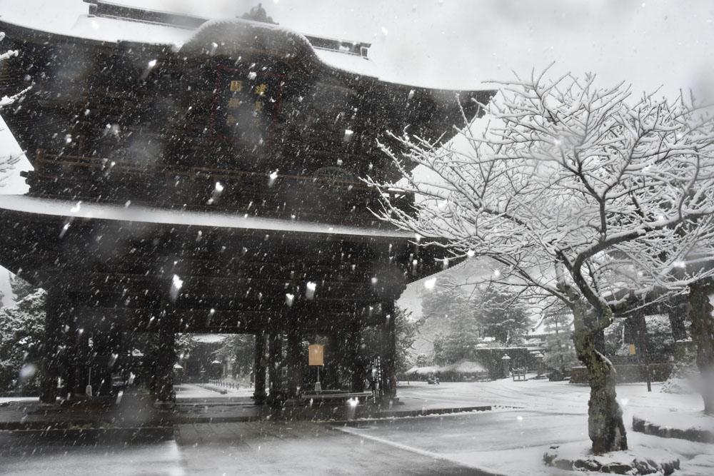 Schnee in Kamakura