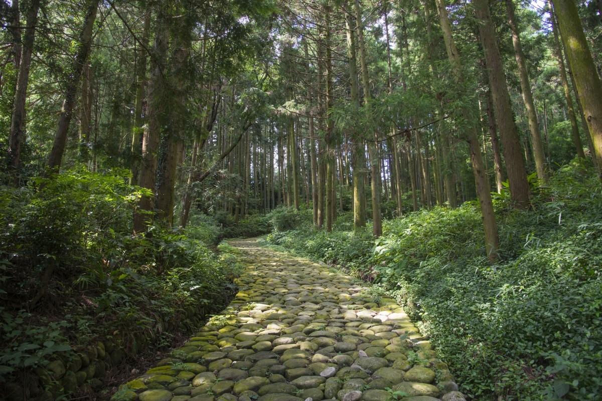 Waldweg auf der Tōkaidō-Strecke