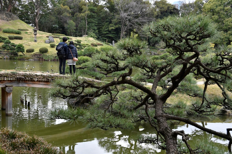 Japanischer Garten im Kiyosumi-Park
