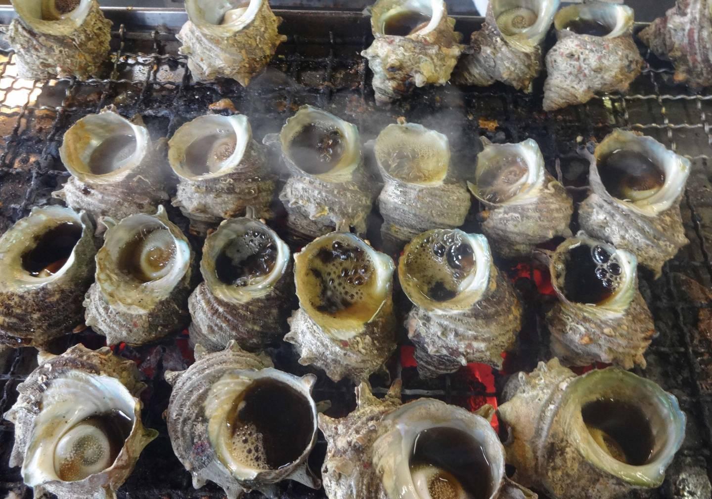 Gegrillte Turbanmuscheln in Karatsu
