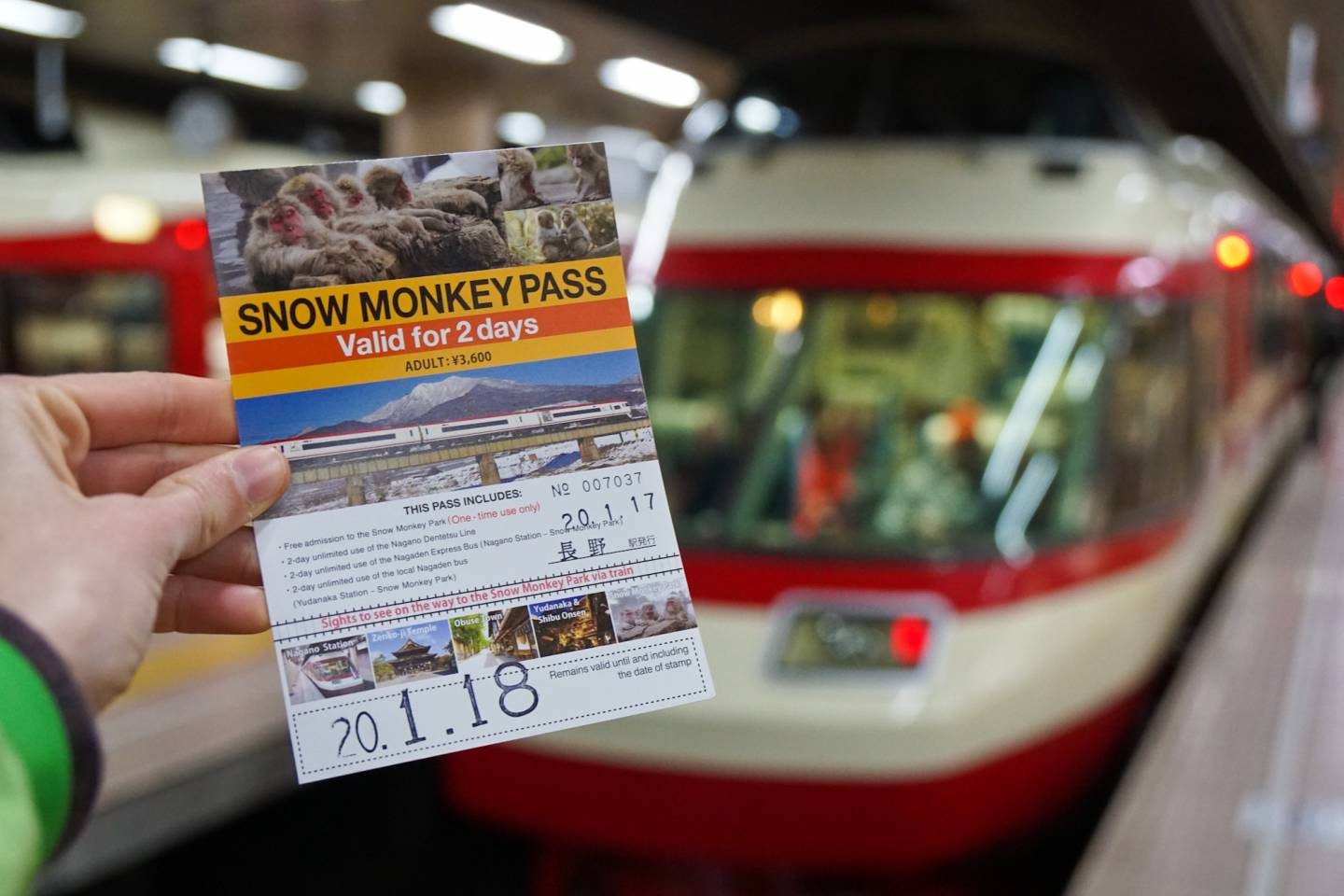 """Snow-Monkey-Pass"""