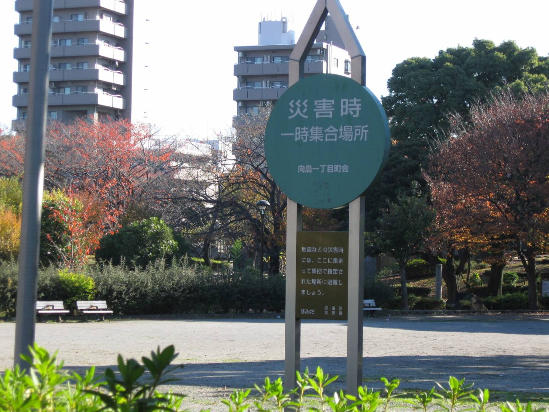 Not-Treffpunkt für Katastrophen (Blaues Schild mit japanischer Beschriftung)