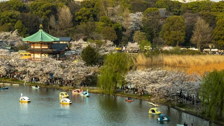 See mit Tretbooten am Benten-dō