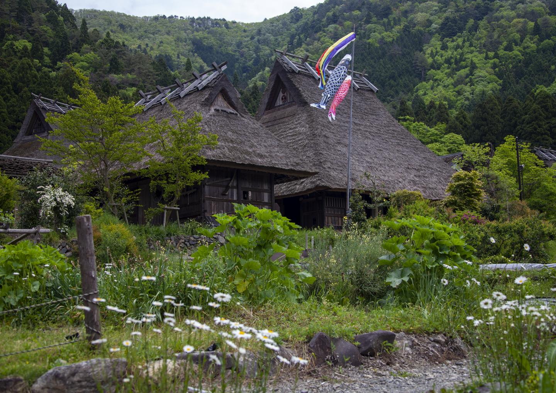 Koi nobori in Kitamura