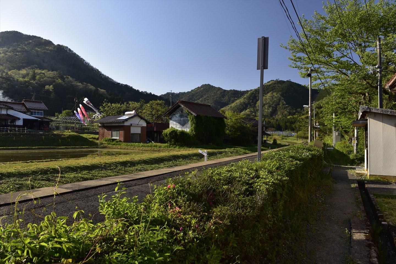 Koi nobori in Yamaguchi