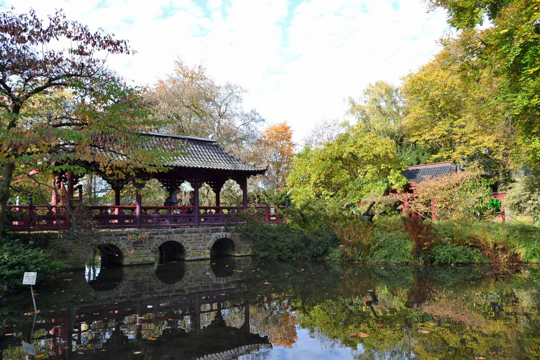 Japanischer Garten in Leverkusen.