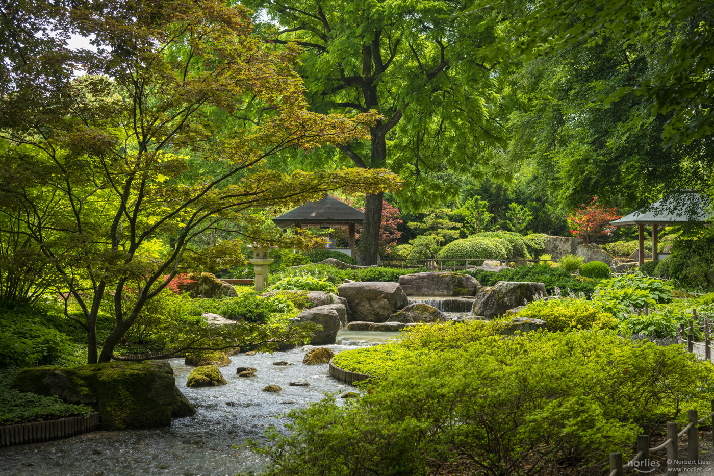 Der Japanische Garten in Augsburg © Foto: Norbert Liesz