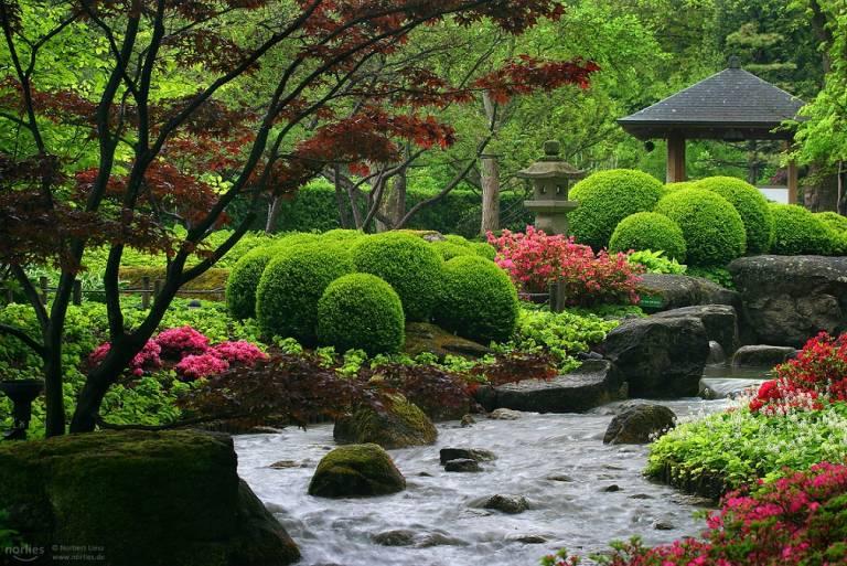 Der japanische Garten in Augsburg.