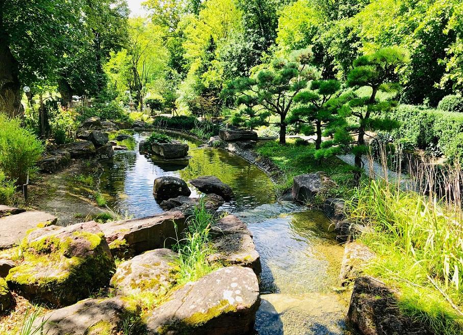 Der Japanische Garten im Kurpark Bad Mergentheim