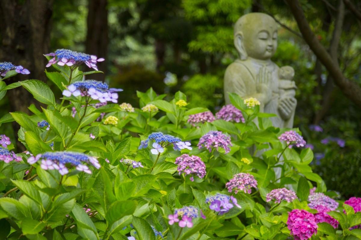 Jizo-Statue und Blumen